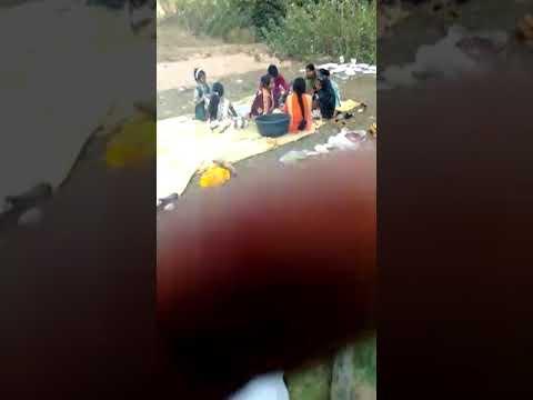 एम आर जूनियर सेक्शन पब्लिक स्कूल खुटार मे बालदिवश पर पिकनिक पार्टी
