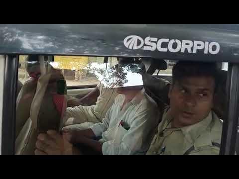 बरमबाबा कोटेदार बाल्मीकि तिवारी को हनुमना पुलिस ने किया गिरफ्तार का देखें लाइव वीडियो